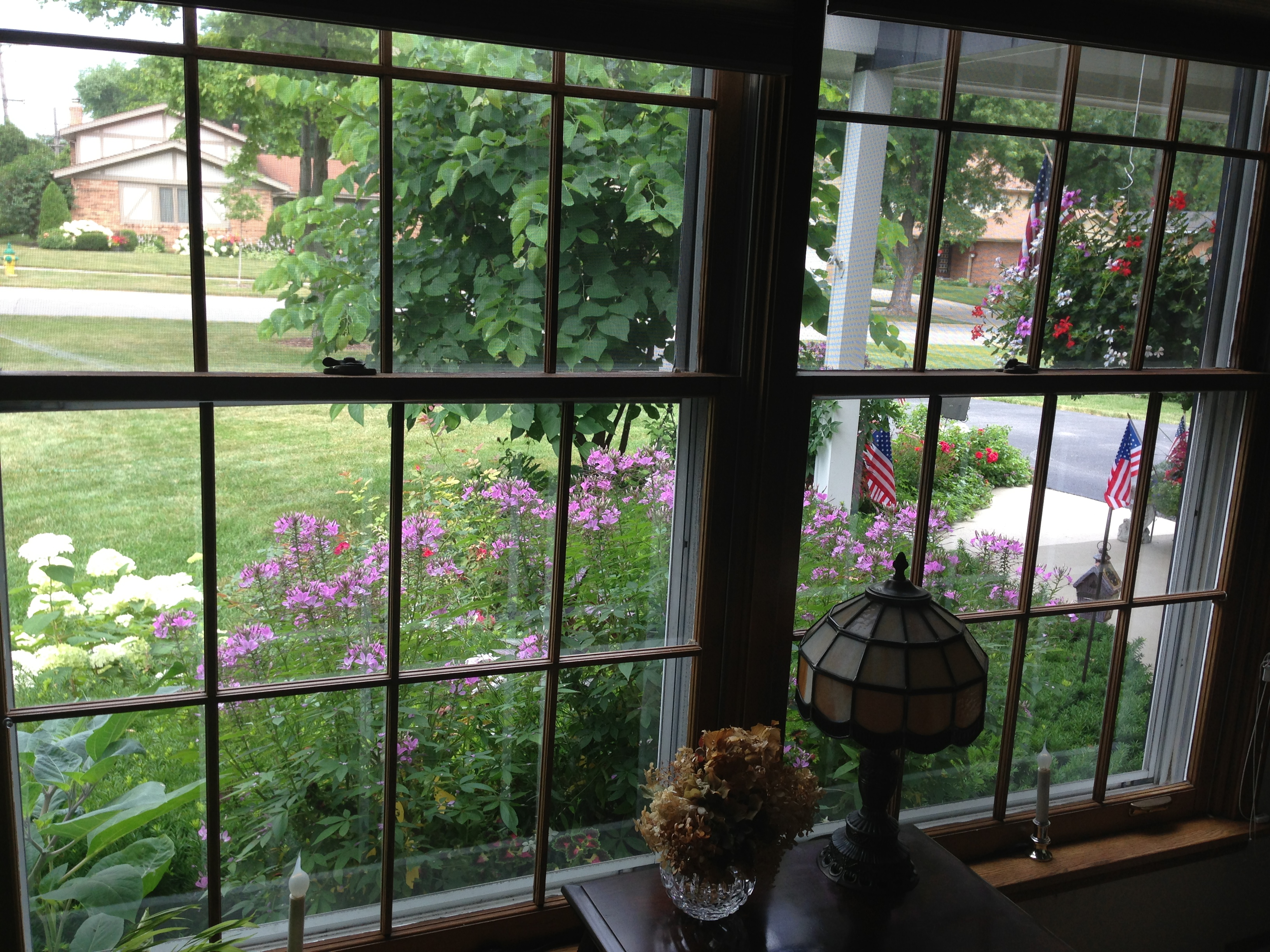 Gardening From The Outside In Midlife Boulevard