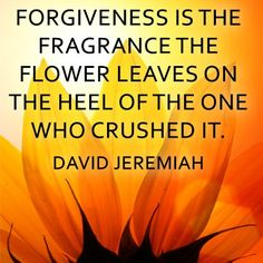 Forgiveness: The Gift You Give Yourself