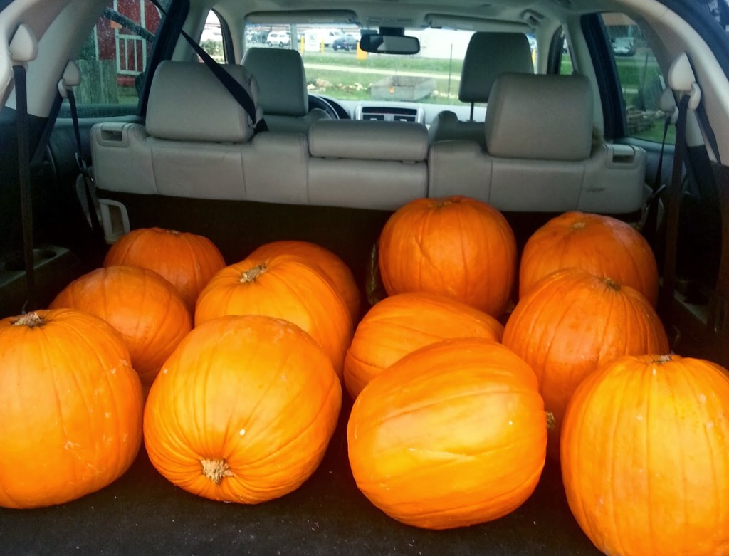 PUMPKINS, A Mother and a Mother-in-law